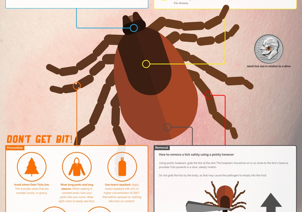 Sickweather-Lyme-Disease-infographic